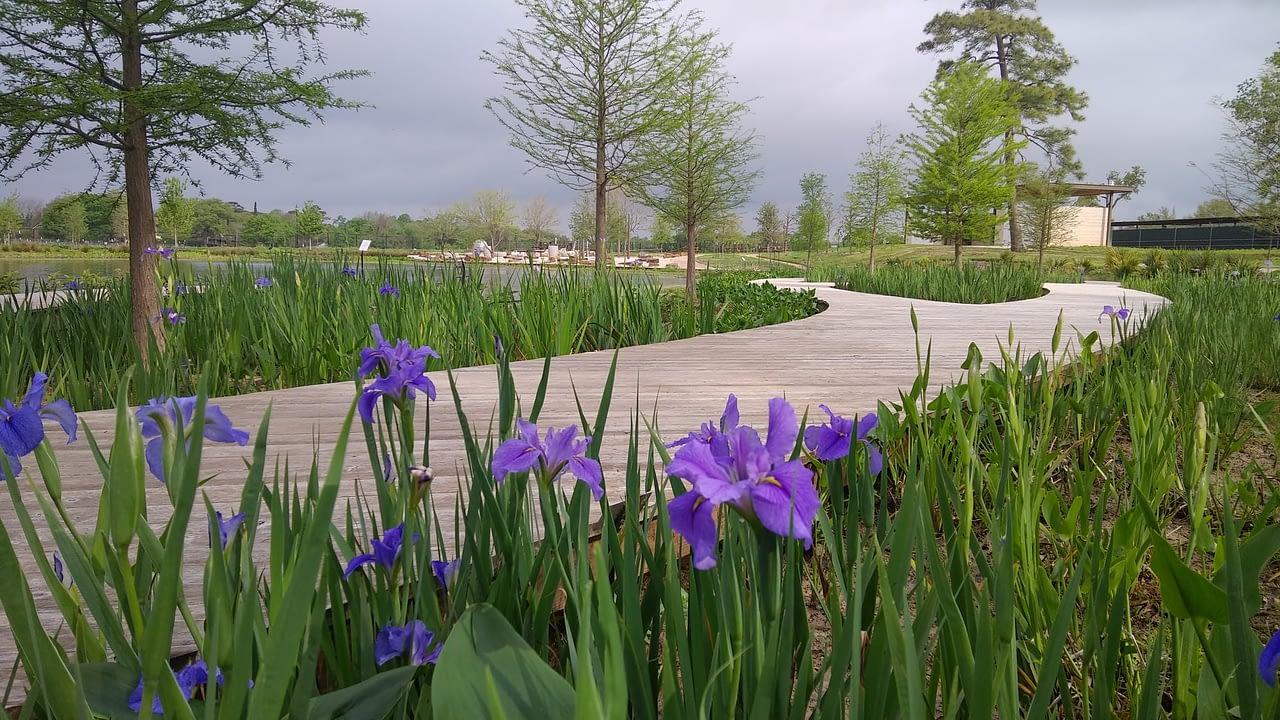 https://mlj18qoceiqy.i.optimole.com/YJeT_HI-w_rBwCrk/w:1280/h:720/q:auto/rt:fill/g:ce/https://www.bdcontractors.com/wp-content/uploads/2021/05/Houston-Botanic-Garden.jpg